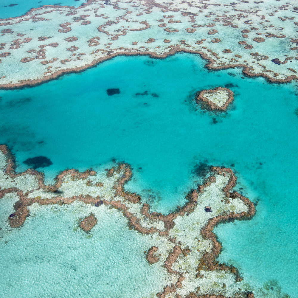 The Great Barrier Reef By Private Air Charter & Yacht