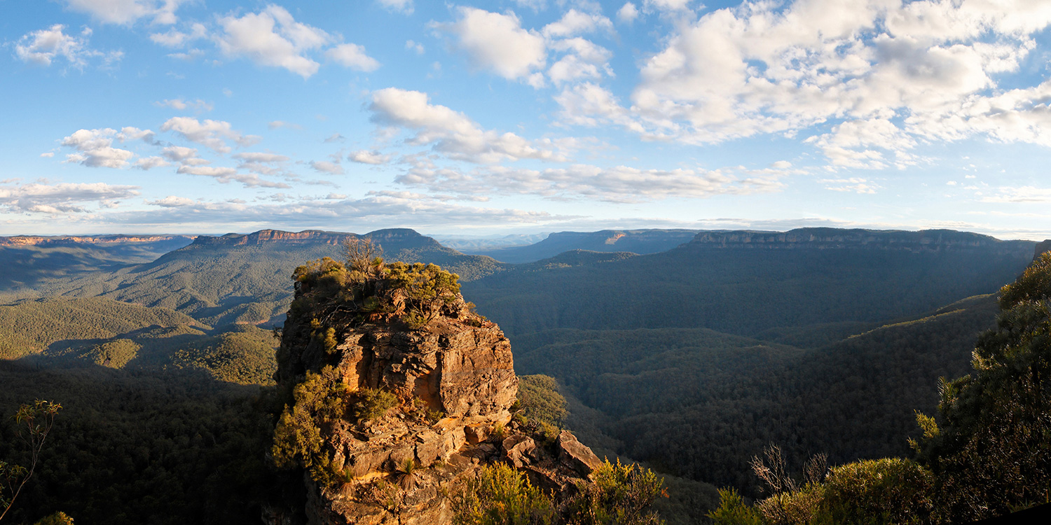 Blue Mountains By Horseback Or Trail Run